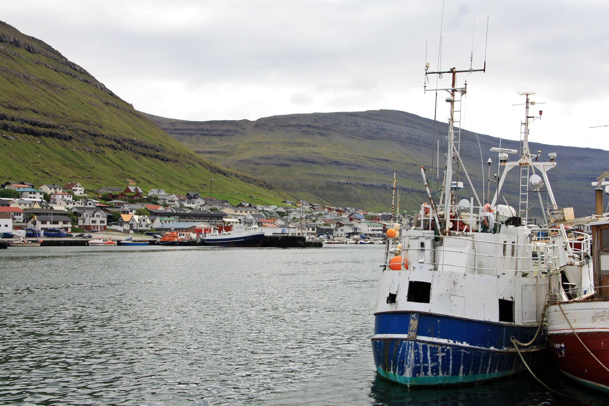 Redistributing resource rights in a resource-dependent economy: The case of the Faroese fisheries reform