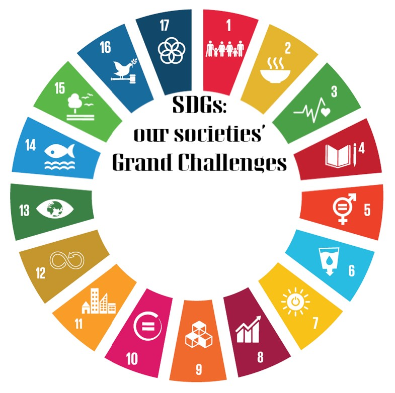 Hybrid organizing in the face of grand challenges